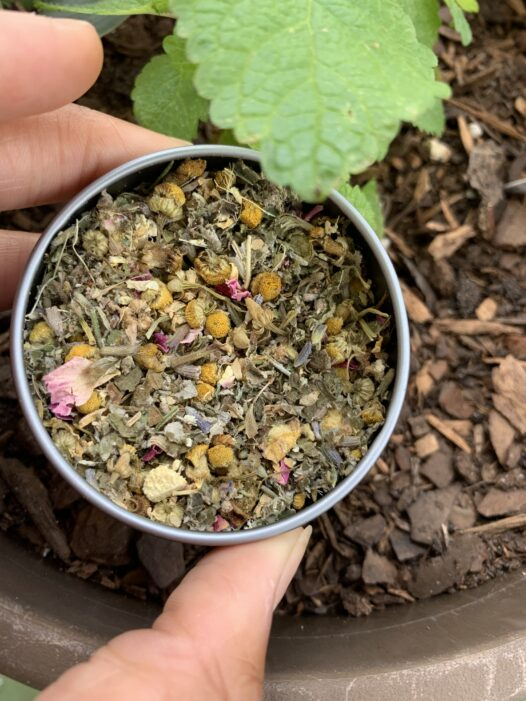 Rest Easy herb blend in a tin next to a potted lemon balm