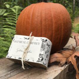 Oatmeal Comfrey Bar soap leaning against a pumpkin outside.