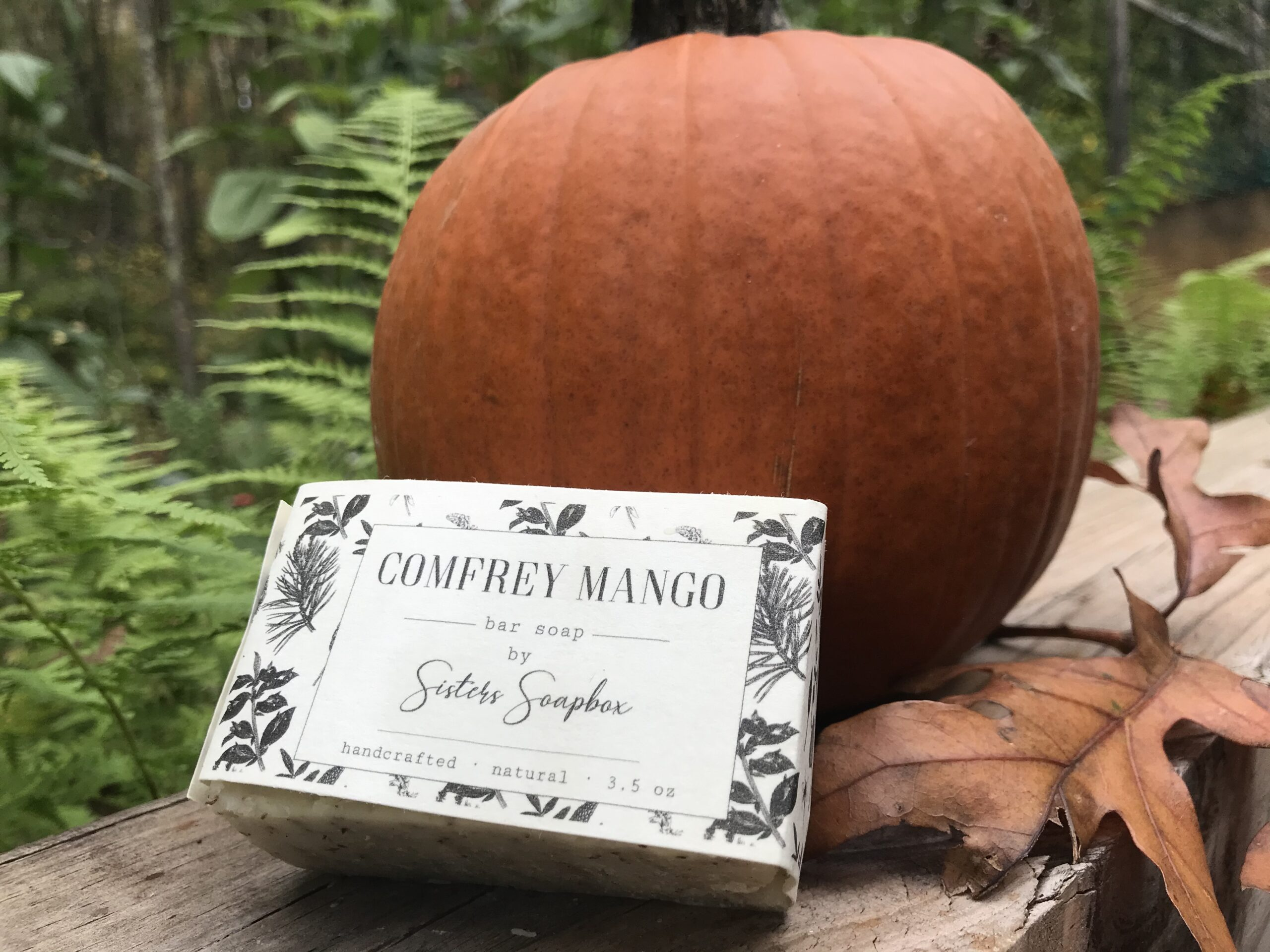 Comfrey Mango bar soap leaning against a pumpkin